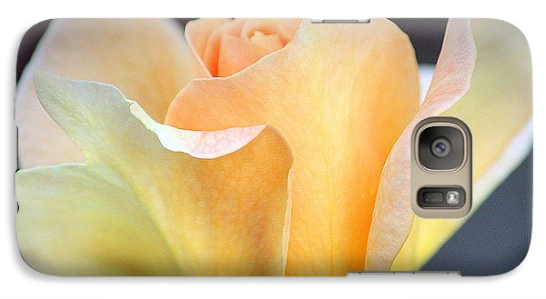 Galaxy Case featuring the photograph Mango's Dance by The Art Of Marilyn Ridoutt-Greene