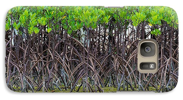 Galaxy Case featuring the photograph Mangroves by Avian Resources