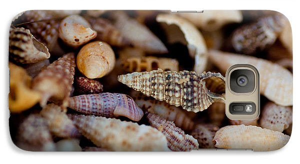 Galaxy Case featuring the photograph Many Shells by Carole Hinding