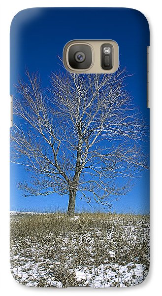 Galaxy Case featuring the photograph Maple In Winter by Jessie Parker