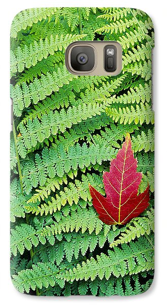 Galaxy Case featuring the photograph Maple Leaf On Ferns by Alan L Graham