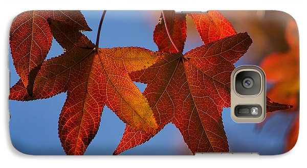 Galaxy Case featuring the photograph Maple Leaves In The Fall by Stephen Anderson