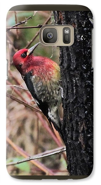 Galaxy Case featuring the photograph Maple Sap Time by I'ina Van Lawick