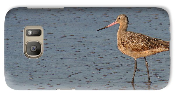 Galaxy Case featuring the photograph Marbled Gotwit At Low Tide by Bob and Jan Shriner