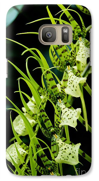 Galaxy Case featuring the photograph Marching Orchids by Eva Kaufman