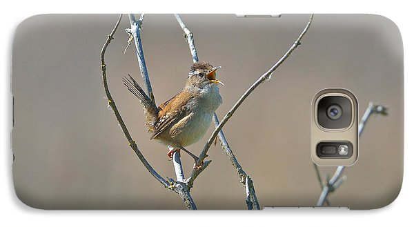 Galaxy Case featuring the photograph Marsh Wren by Kathy King