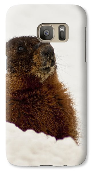 Galaxy Case featuring the photograph Marty The Marmot by Daniel Hebard