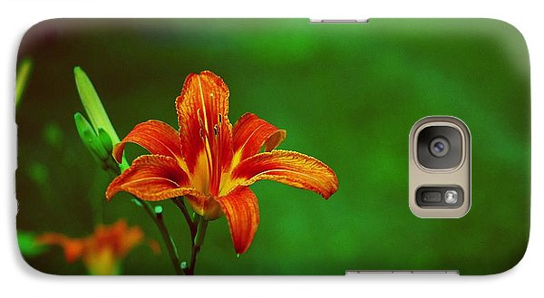 Galaxy Case featuring the photograph Meadow Beauty by Gary Wonning