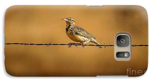 Meadowlark And Barbed Wire Galaxy Case by Robert Frederick