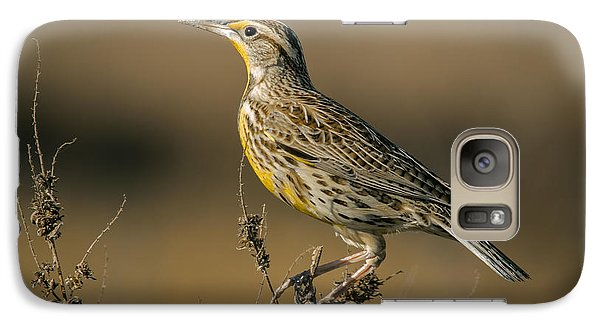 Meadowlark On Weed Galaxy Case by Robert Frederick