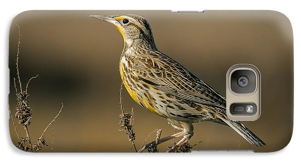 Meadowlark On Weed Galaxy S7 Case by Robert Frederick