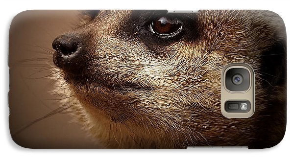 Meerkat 6 Galaxy S7 Case by Ernie Echols