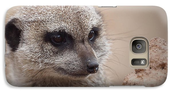Meerkat 7 Galaxy S7 Case by Ernie Echols