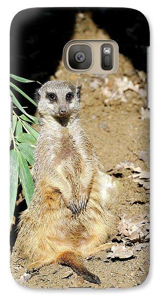 Meerkat Galaxy S7 Case - Meerkat by Heiti Paves