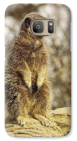 Meerkat Galaxy S7 Case - Meerkat On Hill by Pixel Chimp