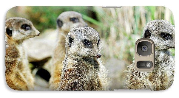 Meerkat Galaxy S7 Case - Meerkats by Heiti Paves