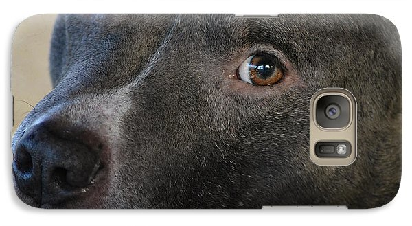 Galaxy Case featuring the photograph Meet Bully by Linda Segerson