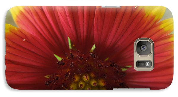 Galaxy Case featuring the photograph Mexican Sunflower by Peg Toliver