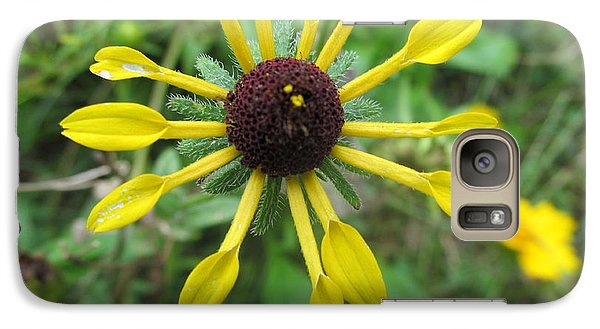 Galaxy Case featuring the photograph Mini-sunflower by Tina M Wenger