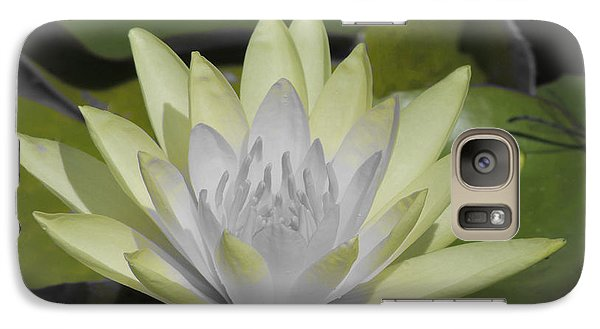 Galaxy Case featuring the photograph Mint by Teresa Schomig