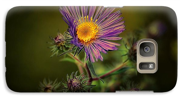 Galaxy Case featuring the photograph Miss Aster by Beth Akerman