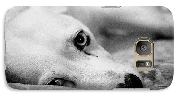 Galaxy Case featuring the photograph Miss Donut  by Faith Williams