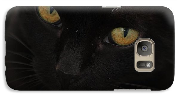 Galaxy Case featuring the photograph Miss Golden Eyes  by Amy Gallagher