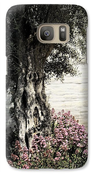 Galaxy Case featuring the photograph Mission San Jose Tree Dedicated To The Ohlones by Ellen Cotton
