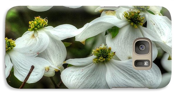 Galaxy Case featuring the photograph Mississippi Dogwood II by Lanita Williams