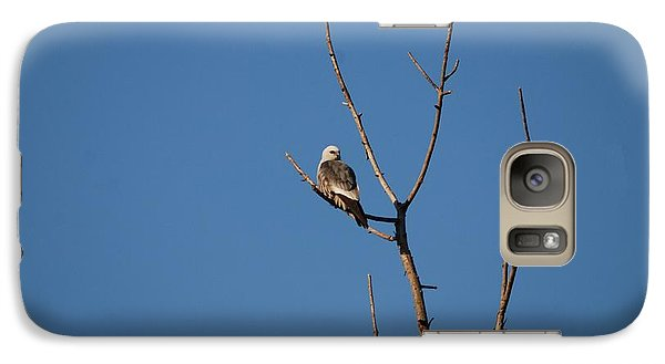 Galaxy Case featuring the photograph Mississippi Kite by Mark McReynolds