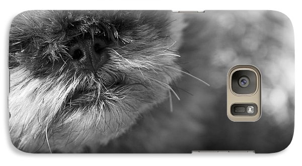Griffon Galaxy S7 Case - Moby by Matthew Blum