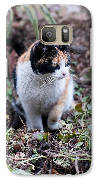 Galaxy Case featuring the photograph Mochi In The Garden by Laura Melis