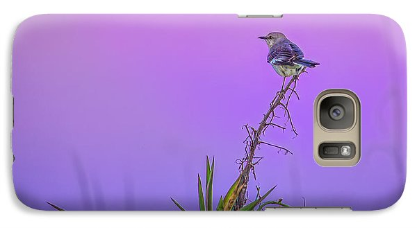 Galaxy Case featuring the photograph Mocking The Yucca by Rob Sellers