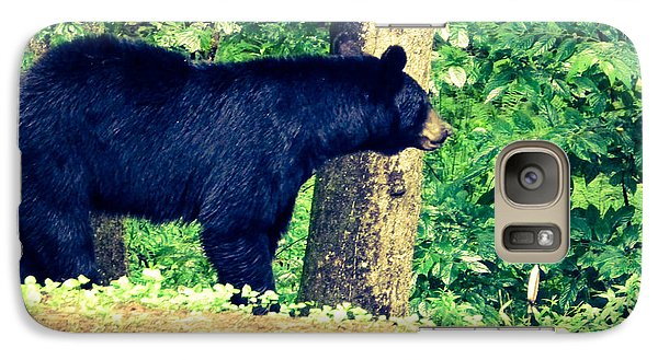 Galaxy Case featuring the photograph Momma Bear by Jan Dappen