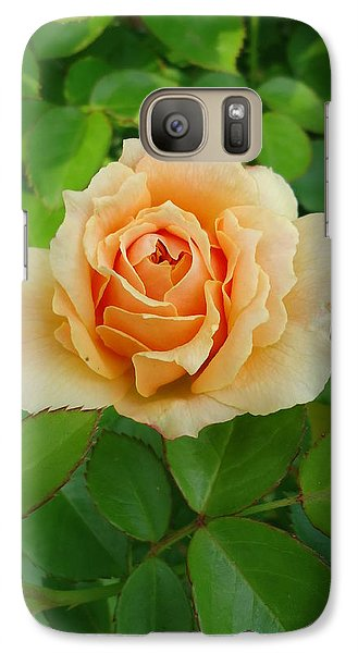 Galaxy Case featuring the photograph Mom's Rose by Leslie Manley