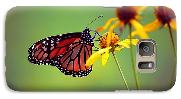 Galaxy Case featuring the photograph Monarch 2013 by Beth Akerman