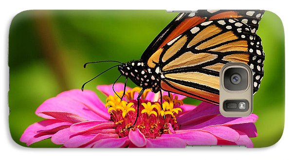 Galaxy Case featuring the photograph Monarch Butterfly On Zinnia by Olivia Hardwicke