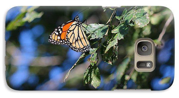 Galaxy Case featuring the photograph Monarch Butterfly by Rebecca Davis