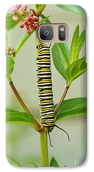 Galaxy Case featuring the photograph Monarch Caterpillar And Milkweed by Steve Augustin