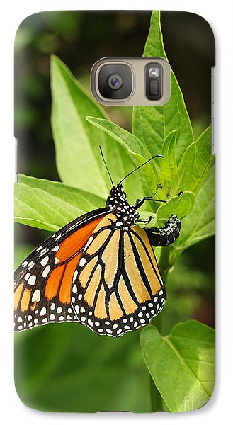 Galaxy Case featuring the photograph Monarch Egg Time by Steve Augustin