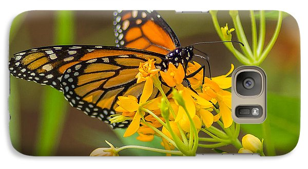 Galaxy Case featuring the photograph Monarch by Jane Luxton