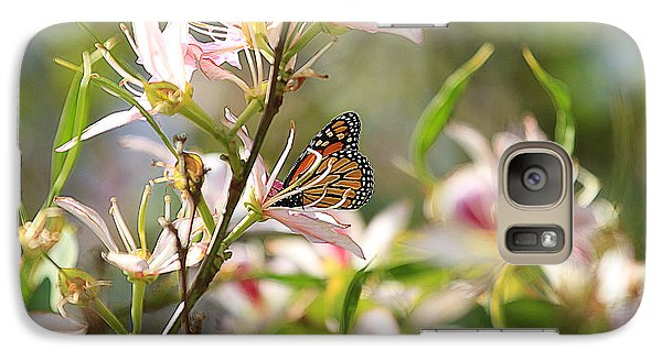 Galaxy Case featuring the photograph Monarch by Kevin Ashley