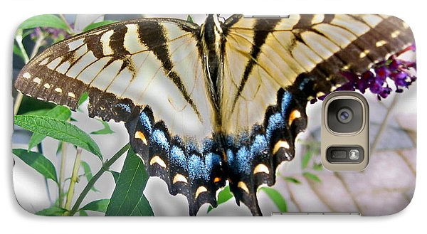 Galaxy Case featuring the photograph Monarch Majesty by Judith Morris