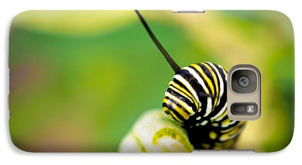 Galaxy Case featuring the photograph Monarch Offspring Squared by TK Goforth