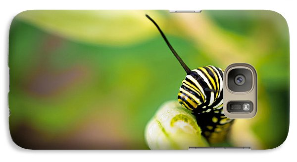 Galaxy Case featuring the photograph Monarch Offspring by TK Goforth
