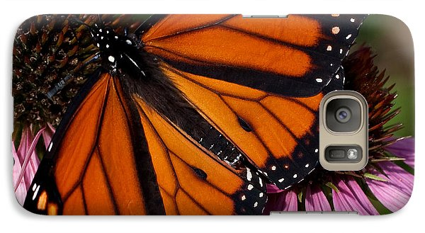 Galaxy Case featuring the photograph Monarch On Purple Coneflower by Barbara McMahon