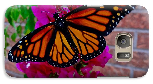Galaxy Case featuring the photograph Monarch by Sarah Mullin