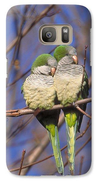 Monk Parakeets Galaxy Case by Paul J. Fusco