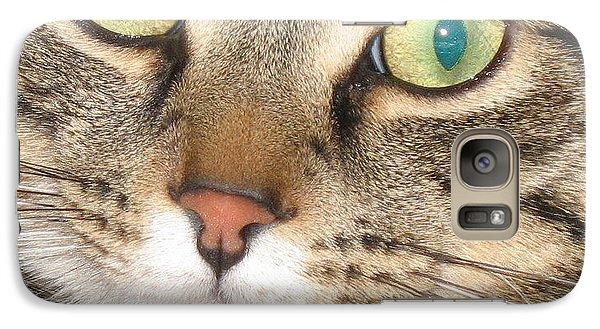 Galaxy Case featuring the photograph Monty The Cat by Jolanta Anna Karolska
