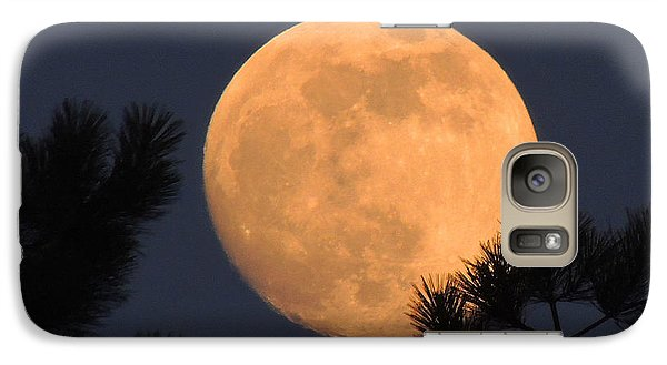 Galaxy Case featuring the photograph Moon Pines by Charlotte Schafer